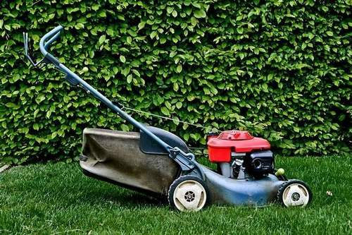 Choosing a Lawn Mower For Home: Petrol Or Electric?