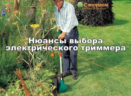 Choosing an Electric Grass Trimmer