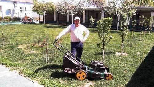 How Mulching Works In A Lawn Mower