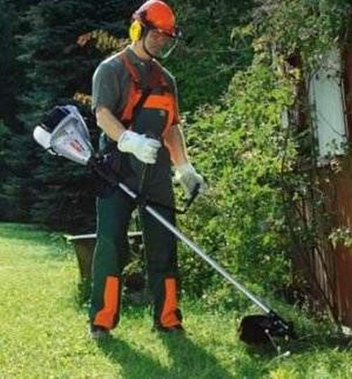 Petrol Trimmer For Giving Which Is Better To Choose