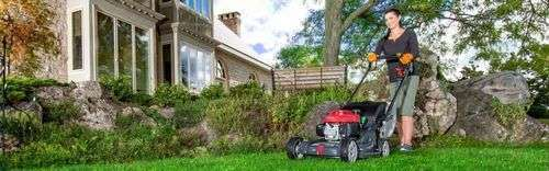 The Petrol Lawn Mower Won'T Start
