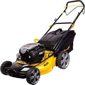 Lawn Mower Selection